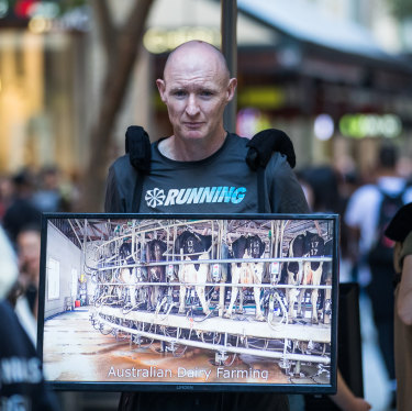 Andy Faulkner displays a monitor playing scenes of animal cruelty in Sydney's Pitt Street Mall.