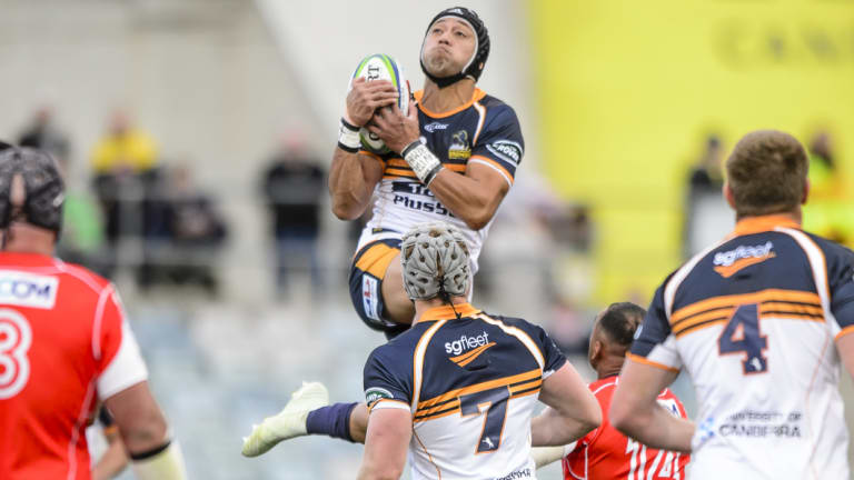 Rising above: Christian Lealiifano is set to juggle Super Rugby and Japanese duties at the end of the year.