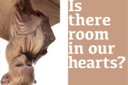 Is There Room In Our Hearts? by Patricia Piccinini