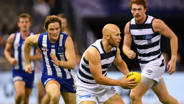 Cooking with Gaz: Geelong's Little Master was brilliant against North Melbourne in round 8.