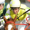 Jockey sent to sports psychologist after another careless riding ban
