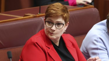 Foreign Minister Marise Payne confirms Australia will adopt Magnitsky-style laws.