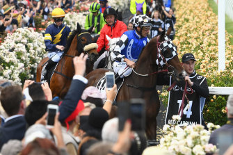 Red Cardinal finished last in the 2018 Melbourne Cup.
