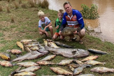 Matt Hansen (right), president of the Inland Waterways group, with his sons, Jack (left) and Cooper, near dead fish pulled from the Macquarie and Bell rivers near Dubbo in recent days.