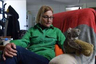 Some farmers such as Alaine Anderson from the Moree region of northern NSW, have stepped in to rescue koalas from land clearing by neighbours.
