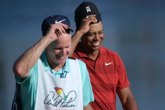 "Tiger Woods' caddie Joe LaCava has been accused of ""intentionally shoving"" a fan."