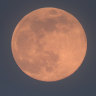 Largest supermoon of 2020 rises