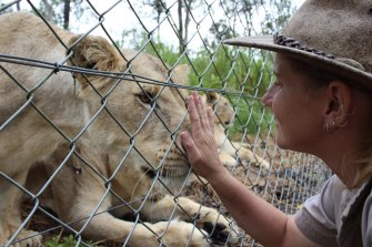 Zookeeper Jennifer Brown was attacked by two lions last week.