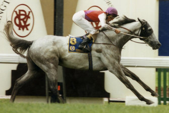 Greg Hall on board Subzero in their 1992 Melbourne Cup win.