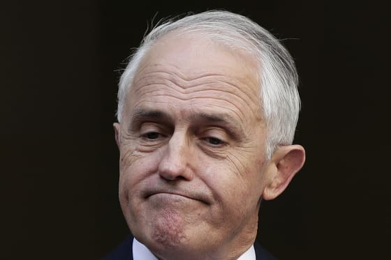 Turnbull faithful could tomorrow wreak revenge