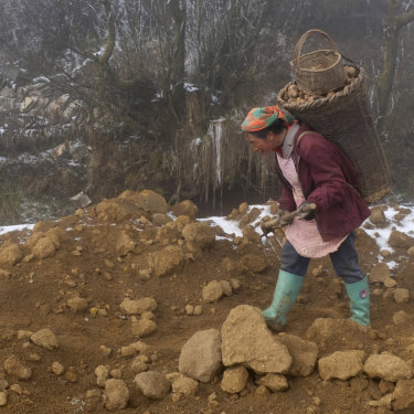 The wife of Xia Dongqiao returns to their home in Zhuanshanbao village with roughly 40 kilos of potatoes on her back.