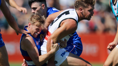 Bulldogs' Hayes banned for round one