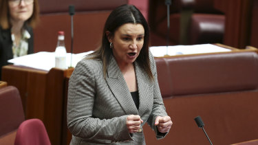 Jacqui Lambie has a crucial swing vote in the Senate.
