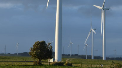 Environment watchdog to take charge of wind farm noise complaints