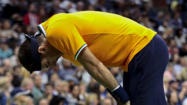 Vanquished: He fought hard, but Del Potro was no match for Djokovic.