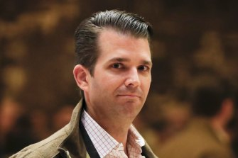 Donald Trump jnr said his family had already suffered greatly.