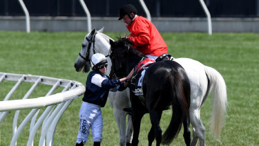 Fractured shoulder: Jockey Ryan Moore is assisted by a race steward after The CliffsofMoher was injured during the Melbourne Cup. He was later euthanised.