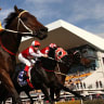 Queensland racing industry to strike for Melbourne Cup and Cox Plate