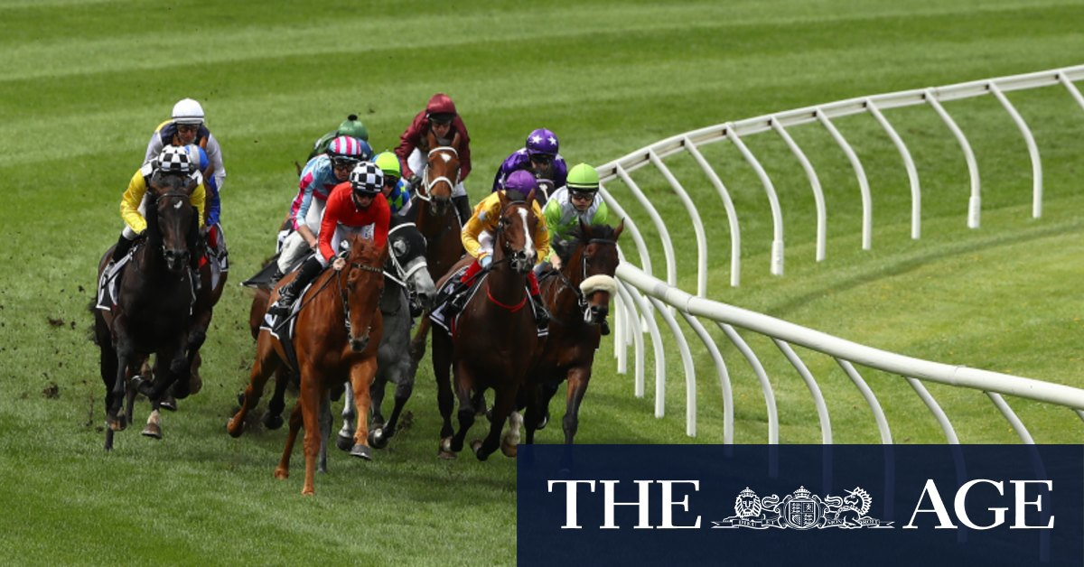 Owner restrictions ease, Racing Victoria pushes for increased crowds