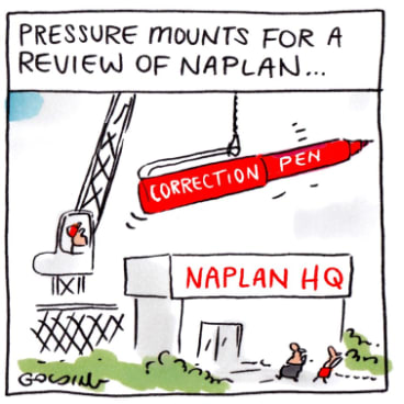 NAPLAN does not capture everything that matters in school education.