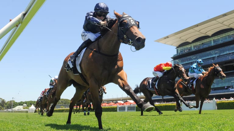 Rails run: English jockey Tom Marquand and Movie World break clear at Randwick on Saturday.