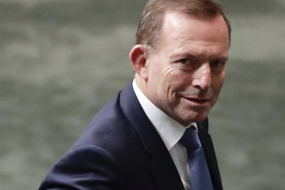 'The obvious choice': Abbott is the Coalition's only hope