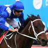 The pressure doesn't affect Winx like everyone else