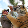 The Netflix series Tiger King, starring Joe Exotic, has become a global sensation.