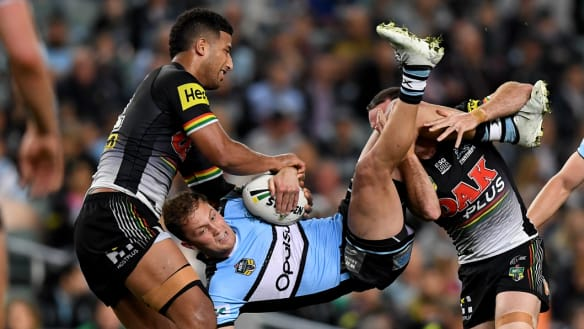 Moylan scores knockout over Maloney as Panthers almost have last laugh