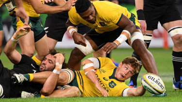 Michael Hooper of the Wallabies recycles the ball during the Bledisloe Cup match between the Australian Wallabies and the New Zealand All Blacks at Optus Stadium in Perth.