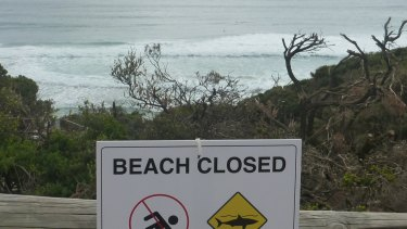 Surfers sit in the water waiting for a wave atInjidup Beach, despite the beach being closed due to a shark sighting.