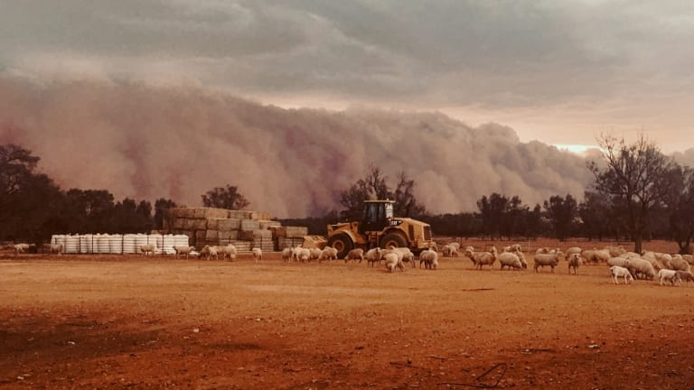 A picture of the dust storm snapped by the Turner's daughter.