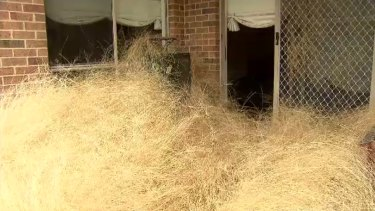 A Melbourne housing estate engulfed by tumbleweeds.