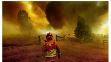Farms and small businesses have been ravaged by the bushfires that have devastated East Gippsland.