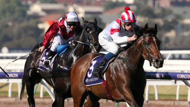 Jockey Michael Dee rides Big Night Out to victory in race 4 at Flemington.