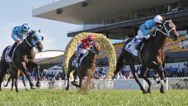 Mo'unga wins at Rosehill in September.