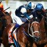 High expectations for returning Blue Diamond winner Tagaloa