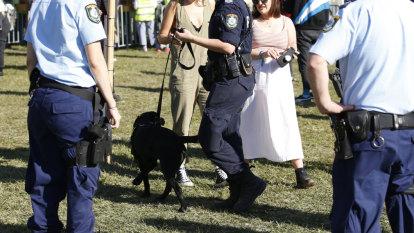 Queensland politicians snub Splendour pill-testing demonstration