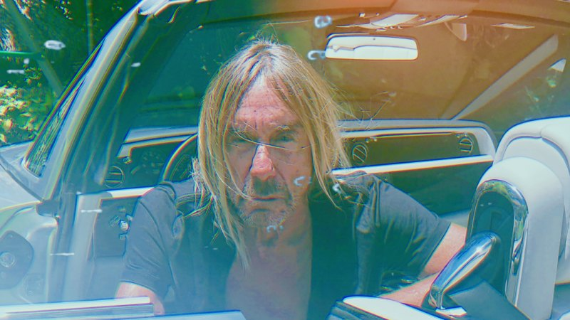 Getting Iggy with it: Iggy Pop's new album Free is far from punk rock