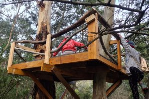 On Tuesday Moreland Council removed this parent-built treehouse in a Coburg North park.