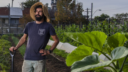 'We're digging a hole for future generations': chemical-free solutions to weed and bug problems