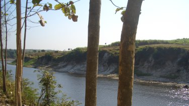 The Solo River at Ngandong. The exposed river terraces where the skull caps were found can be seen on the far bank.
