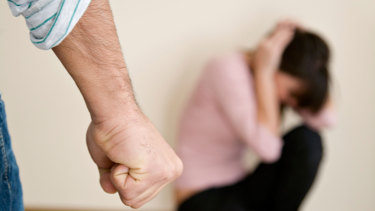 Domestic violence questions about a new federal government online health service by women's agencies.