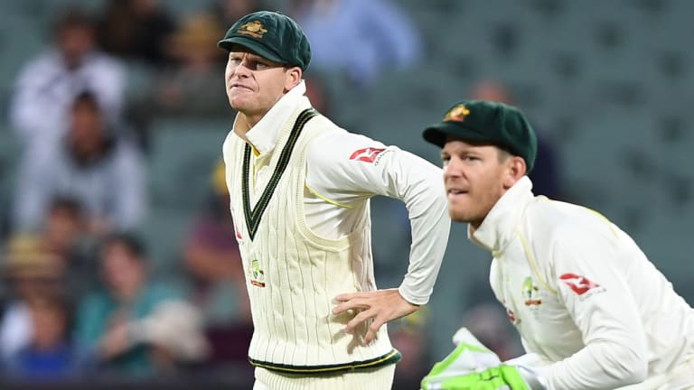 Tim Paine (right) is leading the national side in Steve Smith's absence.