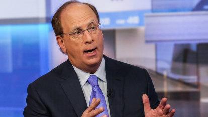 Green 'rethink': BlackRock's Fink urges World Bank, IMF overhaul