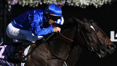 Contender: Avilius will look to break Godolphin's run of outs in the Melbourne Cup.