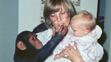Michele Cotton with daughter Sofia and a chimpanzee at home in Saudi Arabia.