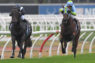 Trainer Gerald Ryan is hoping Bandersnatch's (right) Hawkesbury Guineas scratching will be a blessing in disguise.