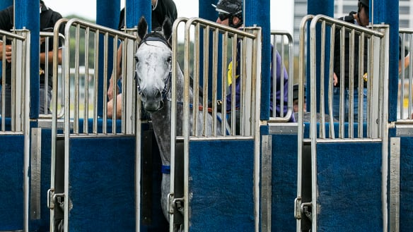 Chautauqua's career in tatters after refusing to jump again