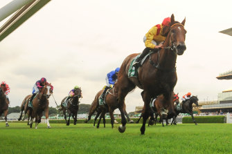 Jean Van Overmeire cruises to the line on Something Fast at Randwick in the summer